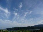 08.5.25下田の公園 (2)(700).JPG
