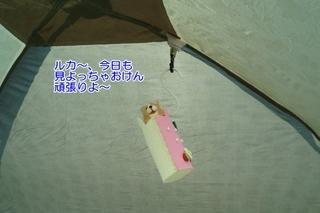 16.3.26高知大会 (6)(500)..JPG
